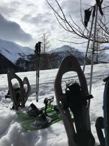 ciaspole, bambini, neve, montagna, vacanza, senza sci