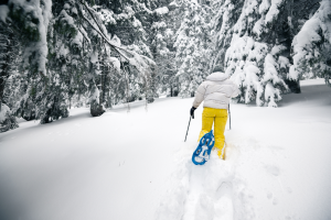 ciaspole, natura, neve, trekking, #skialps, senza sci